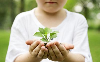 Benutzen Sie Ihre Eco-Cheques um Produkte mit Eco-Label zu kaufen