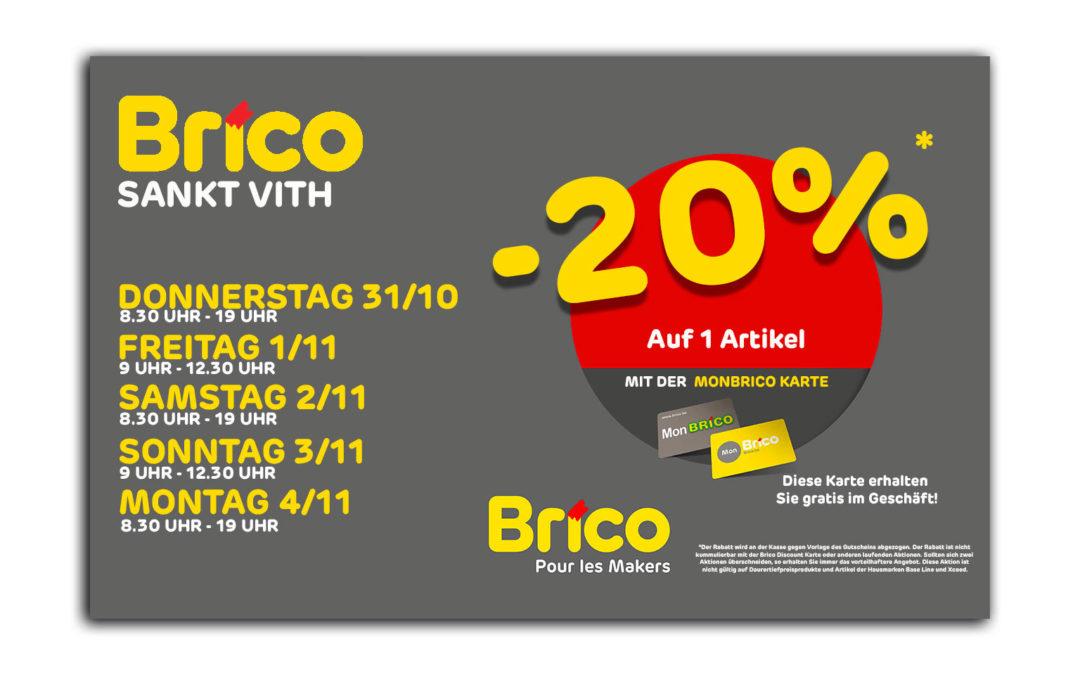 -20%* auf 1 Artikel mit der Mon Brico Karte