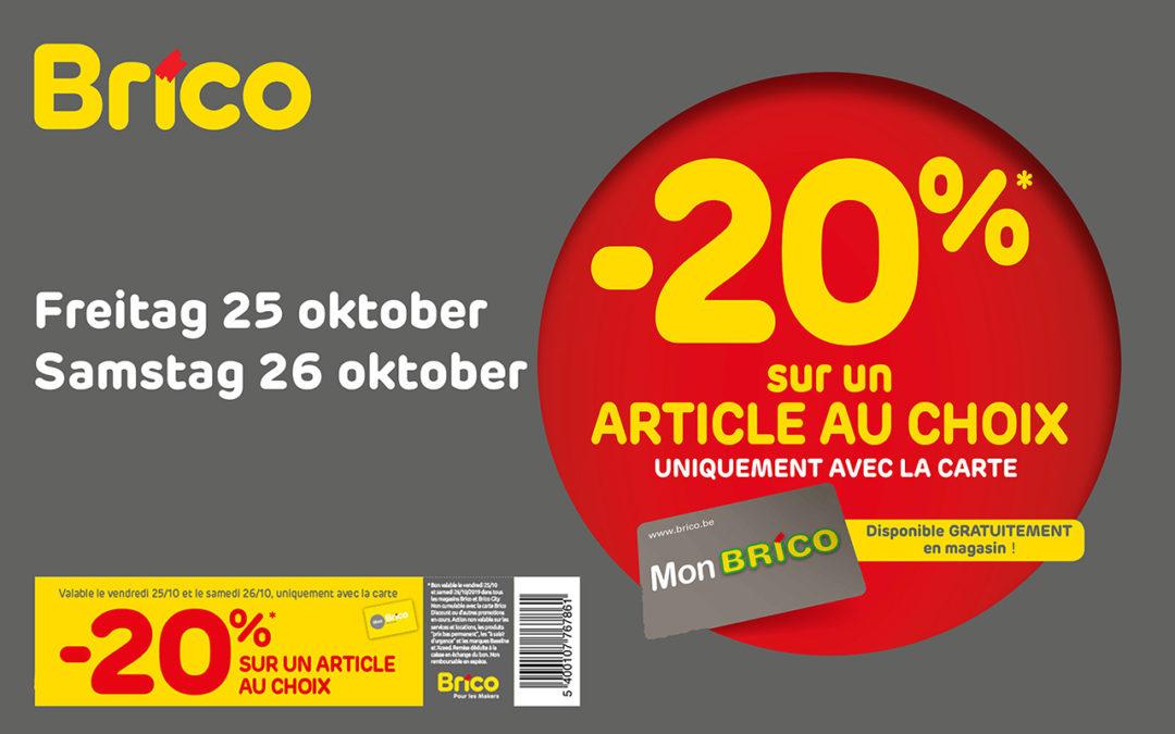 -20% auf 1 Artikel mit der Mon Brico Karte