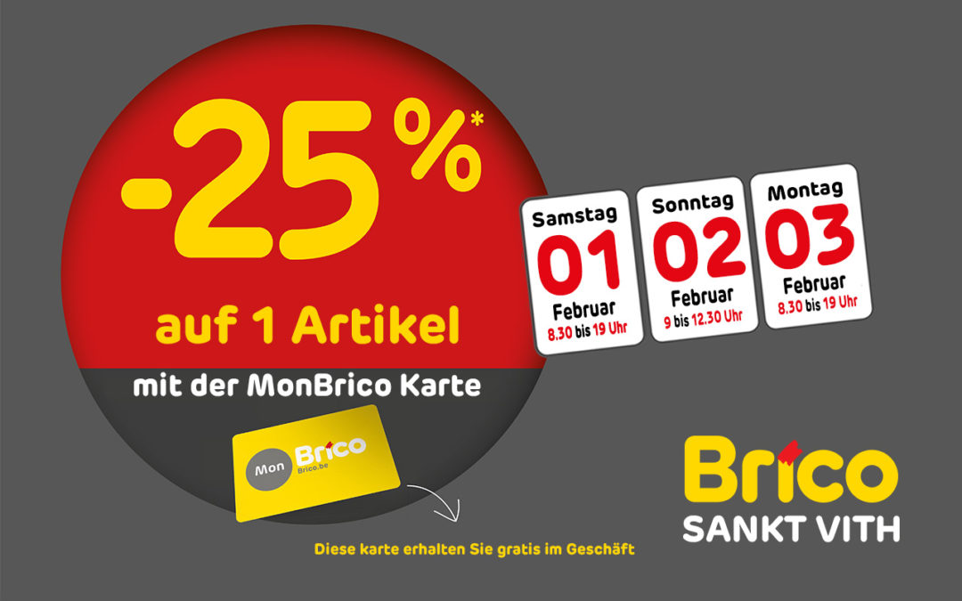 -25%* auf 1 Artikel mit der MonBrico Karte