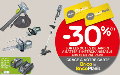 -30%* Rabatt auf Central Park 40V austauschbare Batterie Gartengeräte