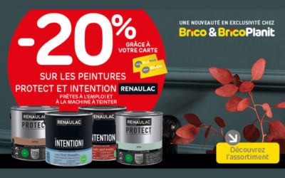 -20%* auf die Farben Protect und Intention Renaulac
